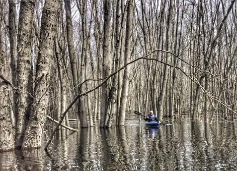 Cruising Canoes